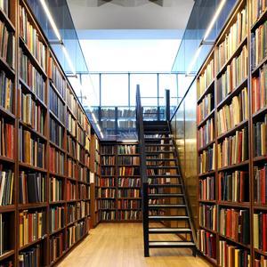 Библиотеки Гдова