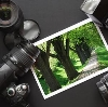 Фотоуслуги в Гдове